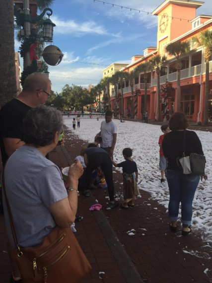 Snow in Florida