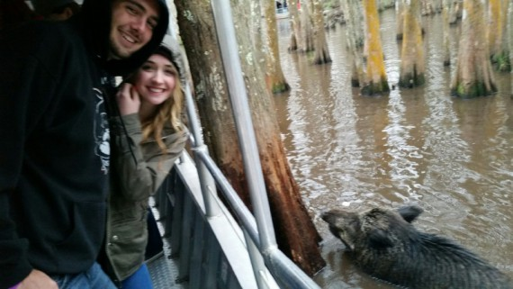 While they didn't see any alligators, they saw plenty of wild boar on the Swamp Tour.