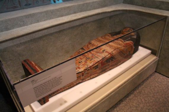 Coffin covered in hieroglyphics.