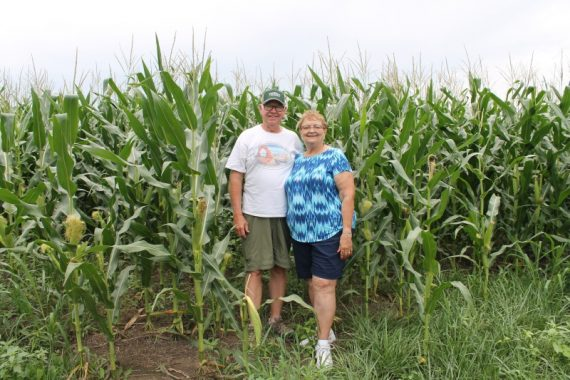 KK and PK in a cornfield